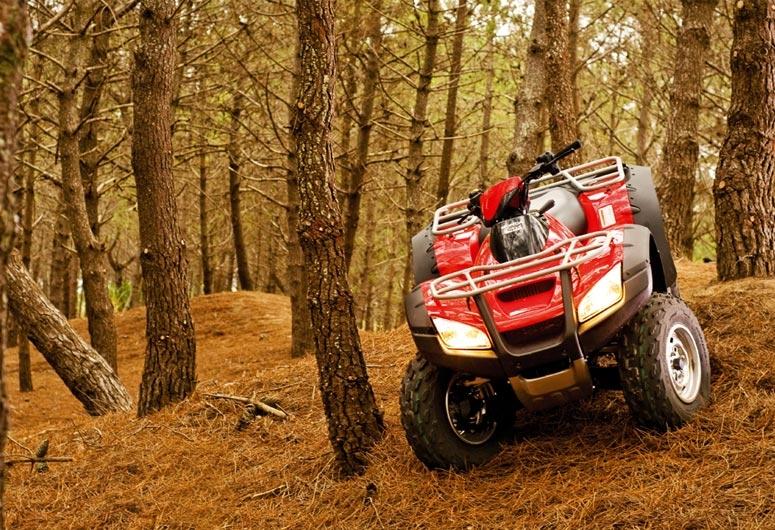 Honda TRX 680 FA